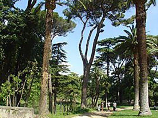 Villa Celimontana 2 28 Kb